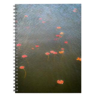 Water Lillies Notebook