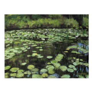 Water lillies print on post card