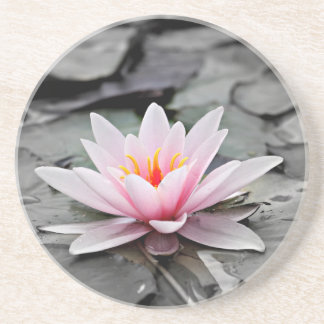 Water Lily #2 Beverage Coasters