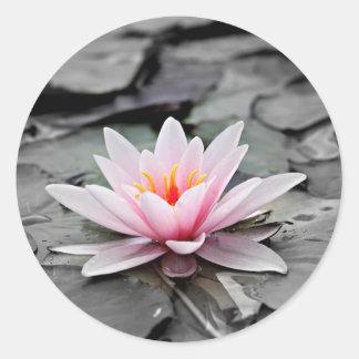 Water Lily #2 Classic Round Sticker