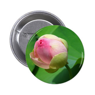 water-lily 2 inch round button