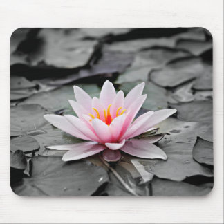 Water Lily #2 Mouse Pad