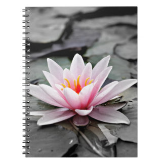 Water Lily #2 Note Books