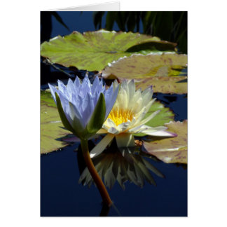 Water Lily Dance Card