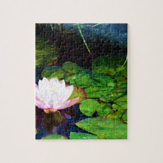 Water lily floating in a pond puzzles