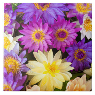 Water lily flowers tile