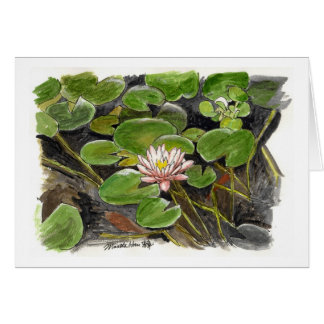 water lily in a pond card