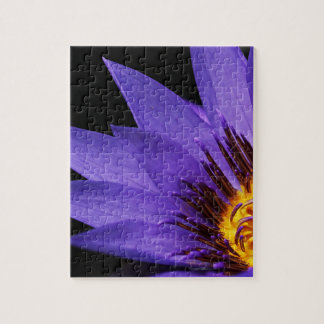 water-lily jigsaw puzzle