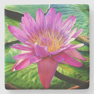 """""""Water Lily"""" Lily Flower Pink Valentine Coaster"""