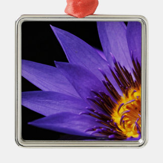 water-lily metal ornament