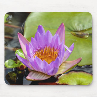 Water lily mouse pad