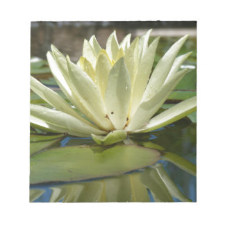 Water lily notepad