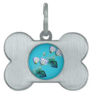 Water Lily On Blue Pet Tag