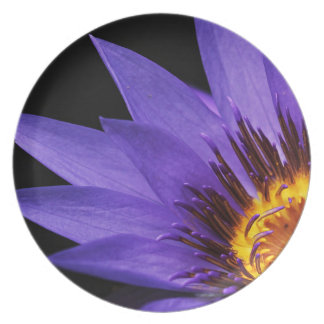 water-lily plate