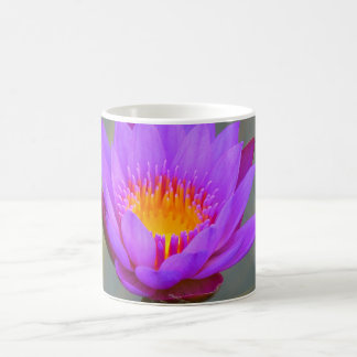 Water lily Print Mug