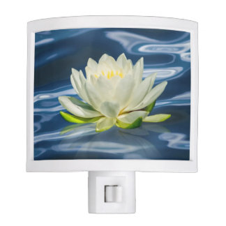 Water Lily Reflected on Blue Water Night Lights