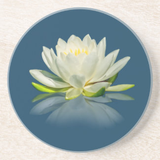 Water Lily Reflected on Blue Water Sandstone Coast Drink Coasters