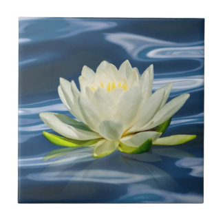 Water Lily Reflected on Blue Water Tile