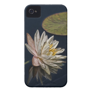 Water Lily Reflection iPhone 4 Cover