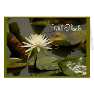 Water lily thank you. card
