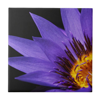 water-lily tile