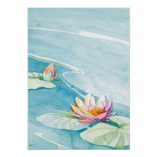 water lily watercolor poster