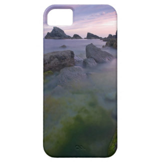 Water Misty Reef Rocks iPhone 5 Cases