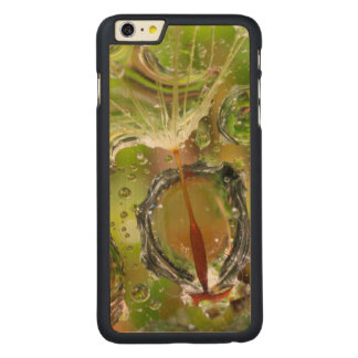 Water on dandelion seed, CA Carved Maple iPhone 6 Plus Case