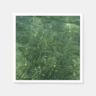 Water over Sea Grass II (Blue and Green) Photo Disposable Napkins