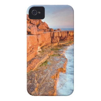 Water Red Rock Reef iPhone 4 Case-Mate Case