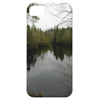 Water Reservior Reflection iPhone 5 Cover