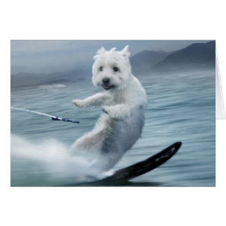 Water Skiing Westie! Card