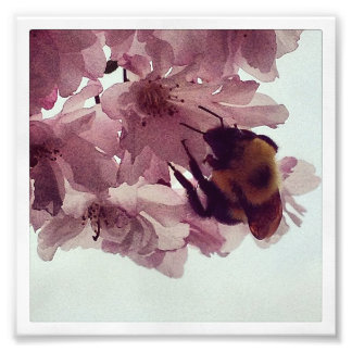 Watercolor Bee Photo Print