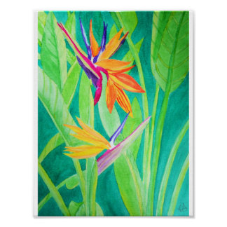 Watercolor Bird of Paradise Flowers Poster