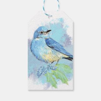 Watercolor Bluebird Garden Bird Art Gift Tags