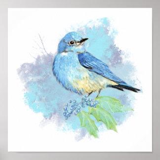 Watercolor Bluebird Garden Bird Art Poster