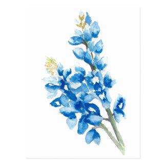 Watercolor Bluebonnets Postcard