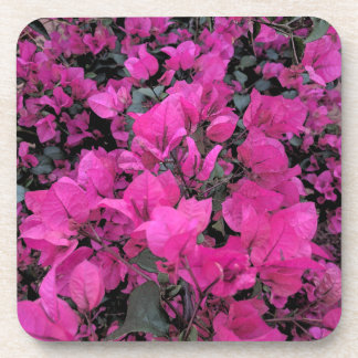 Watercolor-Bougainvillea Coaster