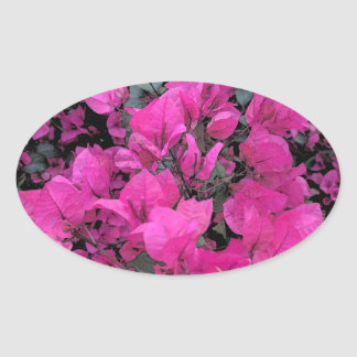 Watercolor-Bougainvillea Oval Sticker