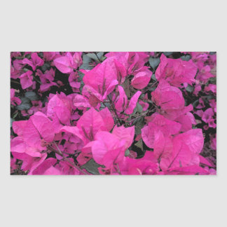 Watercolor-Bougainvillea Sticker