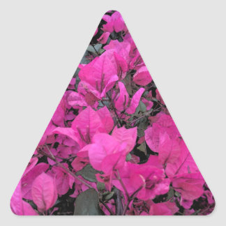 Watercolor-Bougainvillea Triangle Sticker