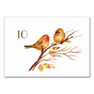 Watercolor Brown Birds Wedding Table Card