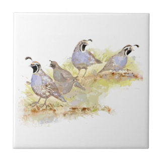 Watercolor California Quail Bird Family art Tile