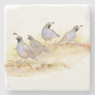 Watercolor California Quail Bird Nature art Stone Coaster