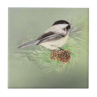 Watercolor Chickadee Bird in Pine Tree Nature art Tile