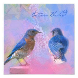 Watercolor Eastern Bluebirds Photograph