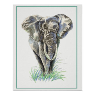 Watercolor Elephant Animal Nature art Poster