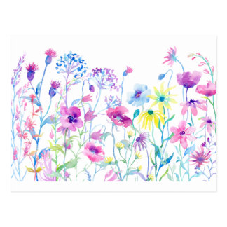 Watercolor Field of Pastel, Wildflower Meadow Postcard