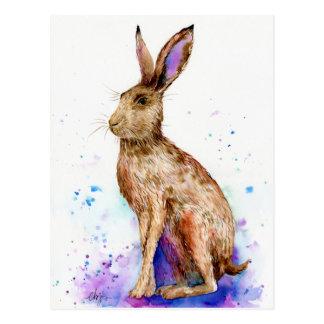 Watercolor hare portrait postcard