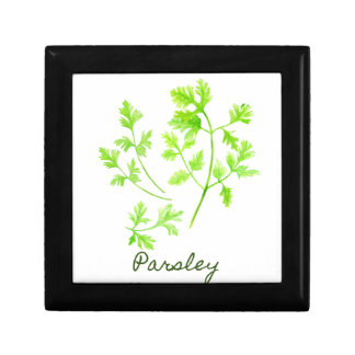Watercolor Herb Parsley Illustration Gift Box